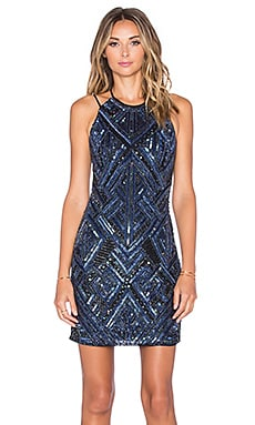 Parker Alta Embellished Dress in Gamma