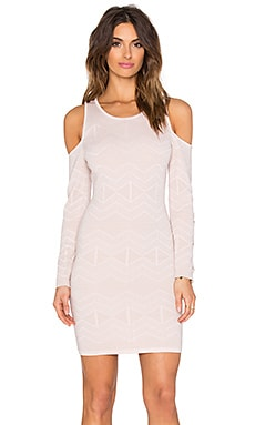 Parker Durango Dress in Blush