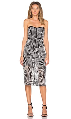Parker Azalea Dress in Black & White