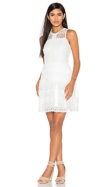 Parker Nerissa Dress in Ivory
