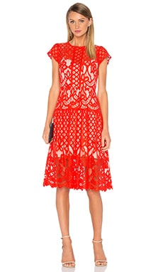 Parker Talulah Dress in Flare