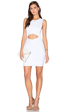 Parker Dunn Dress in White