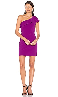 Haiden Mini Dress in Violeta