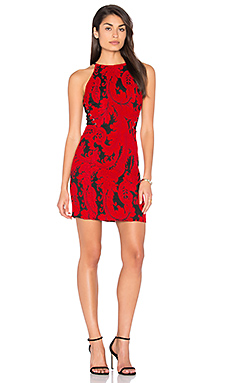 Brittany Dress en Poinsettia