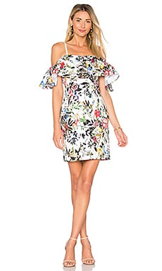 Rainey Dress in Amazon