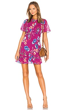 Marina Dress Parker $288 NEW ARRIVAL