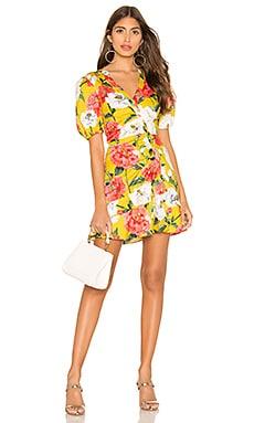 Minna Dress Parker $101