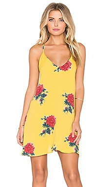 Privacy Please Bristol Swing Dress in Canary