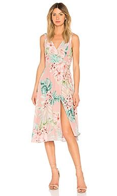 Wilson Dress Privacy Please $96