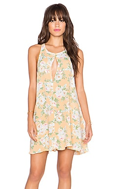 Privacy Please Lexington Swing Dress in Flore