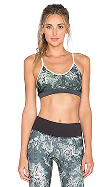 PRISMSPORT Sports Bra in Anaconda