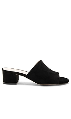 Cara Mule in Black Suede