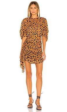 Pia Dress Rhode $149