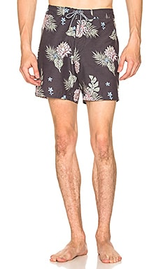 Retro Bloom Trunk Rhythm $34