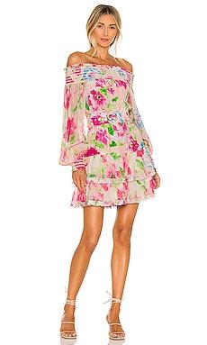 Alora Mini Dress ROCOCO SAND $339 BEST SELLER