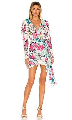 Xandra Dress ROCOCO SAND $109