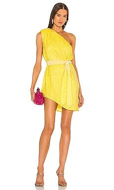 x REVOLVE Ella Dress retrofete $525 Collections