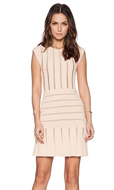 Ronny Kobo Beth Dress in Blush