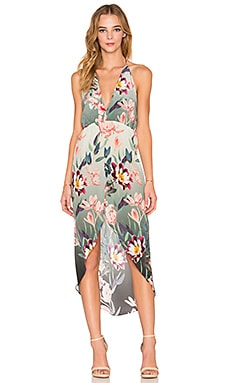 Rory Beca Fever Dress in Edith