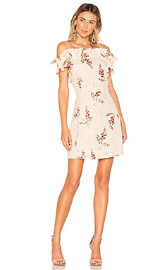 Ivie Embroidered Dress Rebecca Taylor $144