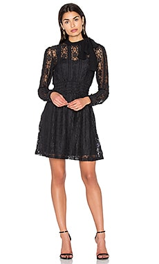 Tie Neck Lace Dress