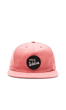 Raised by Wolves Varsity Polo Cap in Clay