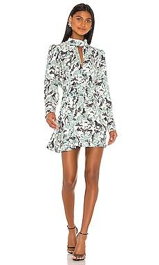 Tania Dress SALONI $198