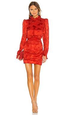Rina B Dress SALONI $417
