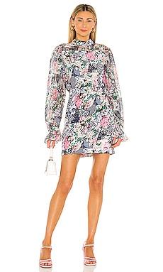 Rina Dress SALONI $595