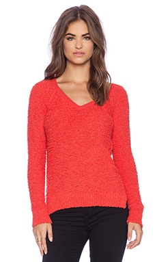 Sanctuary Teddy Bear Sweater in Aurora Red