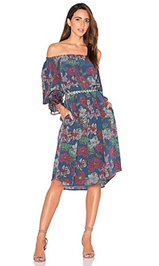 SAM&LAVI Risa Dress in Punta Flora