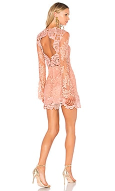 Leondra Lace Mini Dress