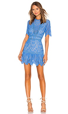 Darian Dress SAYLOR $231