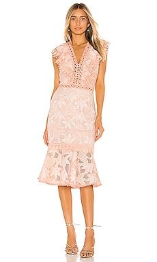 Brynn Dress SAYLOR $297