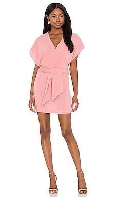Yelle Mini Dress SAYLOR $209