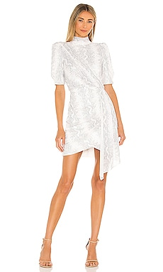 Luella Dress SAYLOR $341