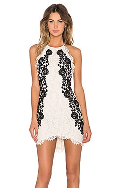 SAYLOR Alexis Dress in Cream & Black