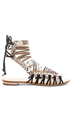 Schutz Agathe Sandal in Pearl & Yucc