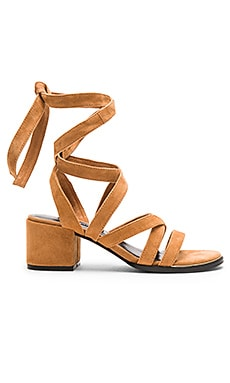 SENSO May Heel in Camel