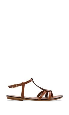 Transfer Gladiator Sandal in Cognac