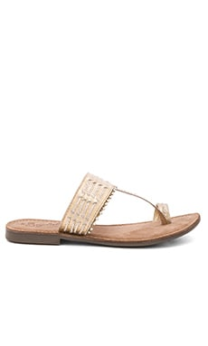 Survey Sandal in Gold