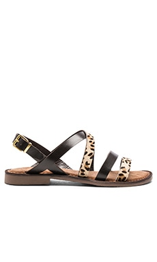 Seychelles Onward Calf Hair Sandal in Black & Leopard