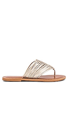Bright Eyed Sandal Seychelles $69 BEST SELLER
