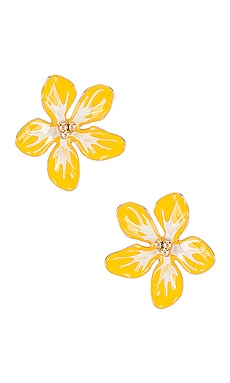 BOUCLES D'OREILLES MORNING GLORY SHASHI $40