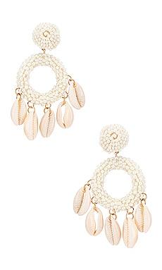 Carmen Shell Hoop Earring SHASHI $62