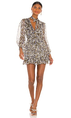Valentina Scarf Neck Mini Dress Shona Joy $335 BEST SELLER