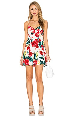 Winona Dress in Flamingo Flower Stretch