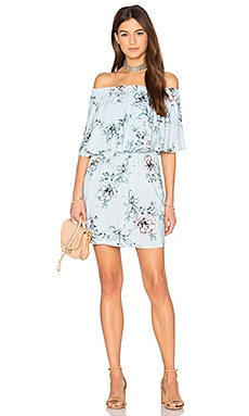 Casita Mini Dress in Wildflower Breeze