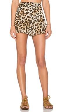 Show Me Your Mumu Carlos Swing Short in Miss Cheetah