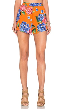 Show Me Your Mumu Carlos Swing Short in Bahama Bloom